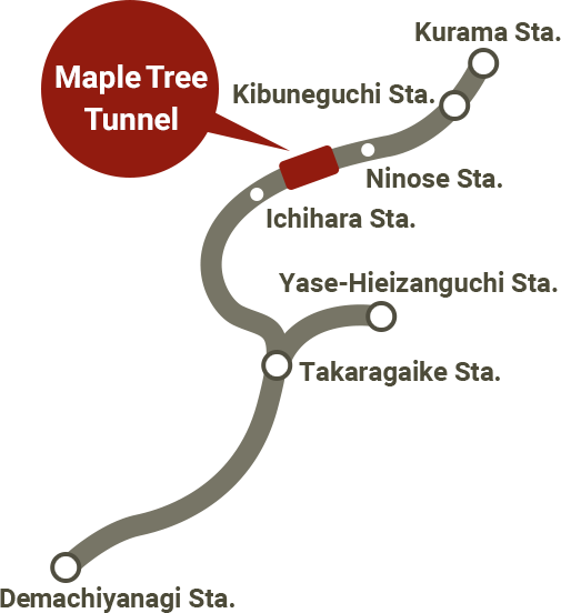 Maple Tree Tunnel map