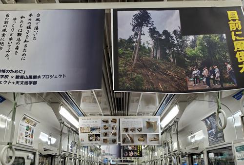 第71回 鞍馬山風倒木プロジェクト