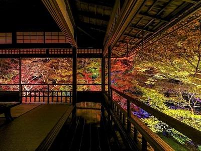 「京都洛北・八瀬のもみじ」瑠璃光院夜間特別拝観・八瀬もみじの小径ライトアップ