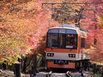 秋のもみじ列車