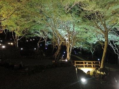京都洛北 八瀬もみじの小径ライトアップと瑠璃光院 夜の特別拝観